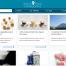 In opdracht van Food Valley vullen van de website van Dutch Food Innovations met teksten en foto's (inclusief passend maken van fotomateriaal).